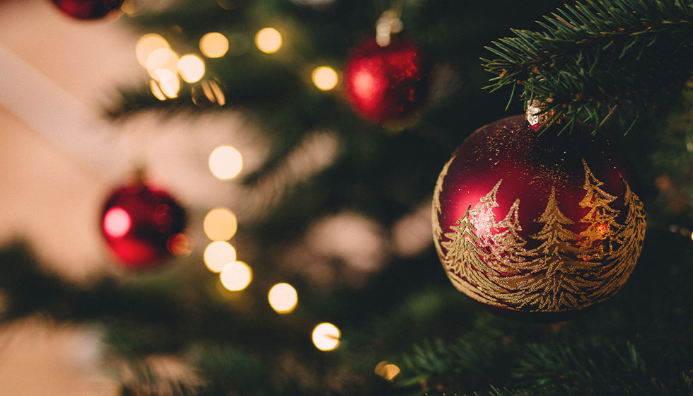… under the Christmas tree